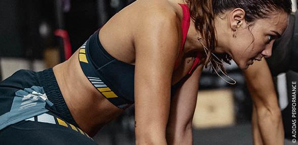 Fitnesz / Tréning
